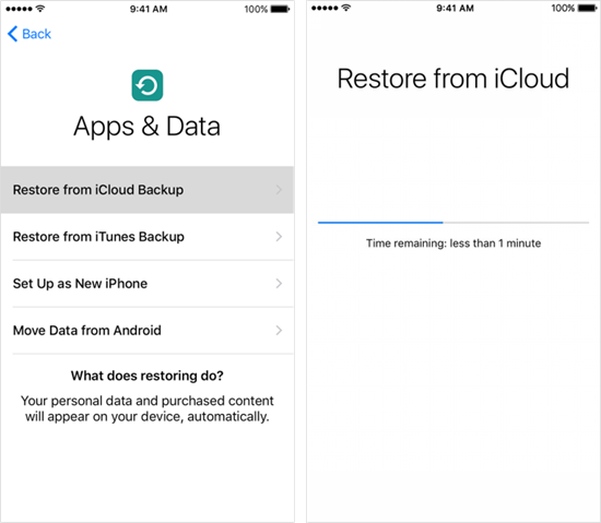 Restore Texts from an Old iCloud Backup