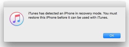 Put Your iPhone in DFU Mode